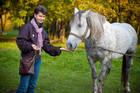 Конкурсы с лошадками